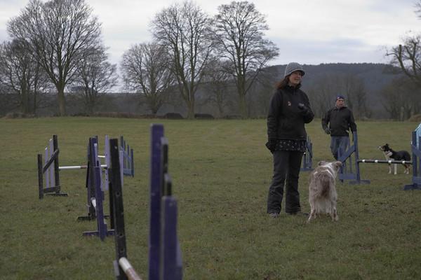 Dog Agility 23/1/2011